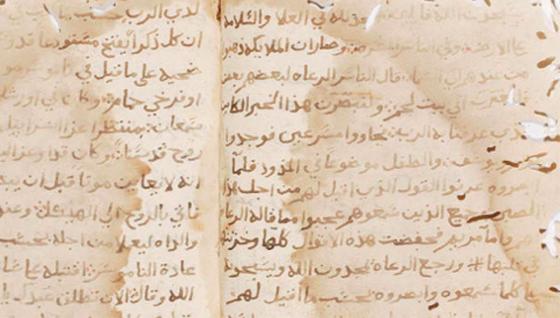 Constantine capitale de la culture arabe: des manuscrits à éditer