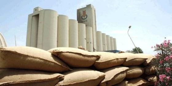 L'Algérie achète plus de 700 000 tonnes de blé