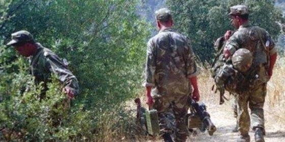 Au moins 15 terroristes abattus à Ain Defla