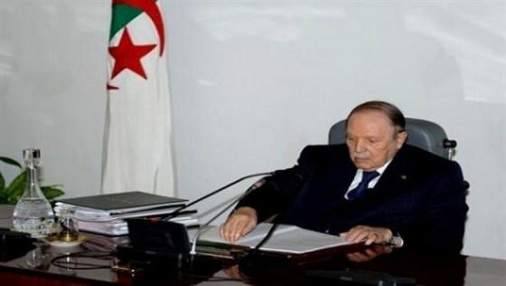 Algeria launches tax amnesty to improve battered public finances