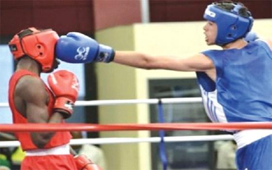 Les boxeurs algériens remportent cinq médailles d'or et forcent l'admiration