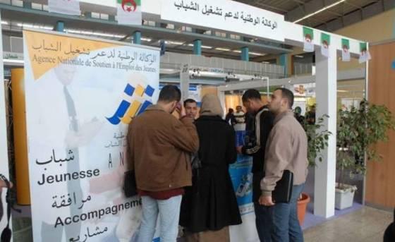 ANEM : 300.000 demandeurs d'emploi placés les 10 premiers mois de 2015