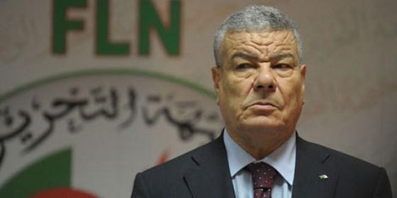 Selon Saâdani : la révision de la constitution aura lieu en janvier