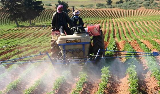 Les agriculteurs débiteurs peuvent racheter des années de cotisation