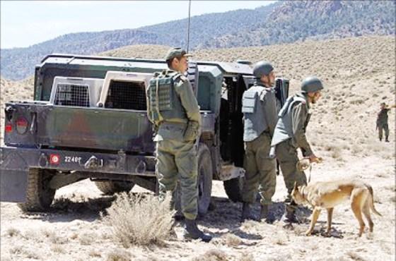 L'armée se mobilise contre l'immigration suspecte