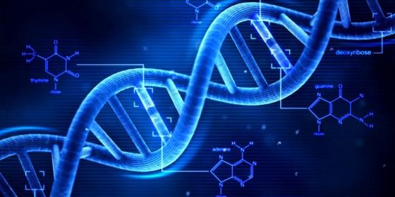 Une base de données nationale d'empreintes génétiques