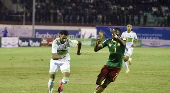 Match amical Algérie–Cameroun: La Hollande émet des réserves sur les joueurs évoluant en France