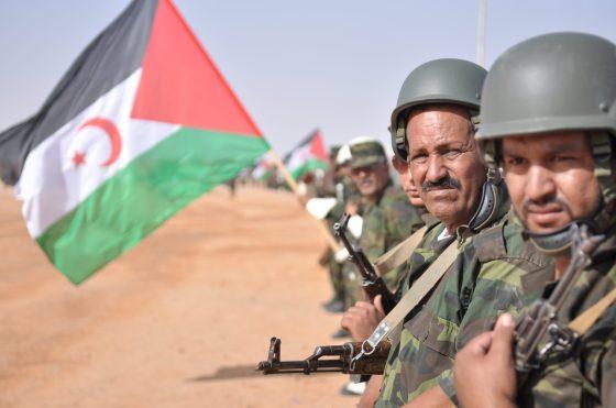 Après l'agression marocaine: La guerre au Sahara