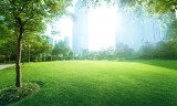 La révolution verte, la religion de la nature