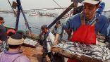 La sardine à 1 200 DA à Annaba et colère des armateurs