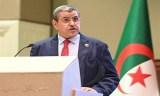 Djerad :  «Faire de la culture un secteur créateur de richesses»