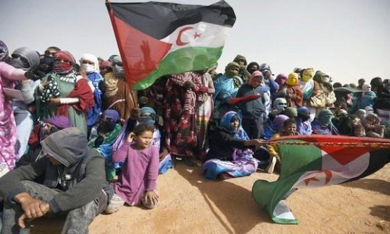 Le Polisario démonte les allégations marocaines