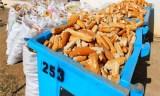 4 millions de baguettes jetées depuis le début du ramadhan