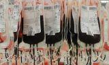 Anémie hémolytique : Le calvaire continue pour les malades