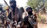 Libération des travailleurs chinois enlevés au Nigeria