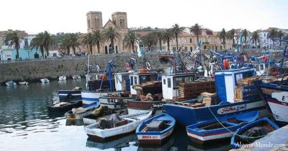 Saison estivale : El-Kala, sirène de la Méditerranée