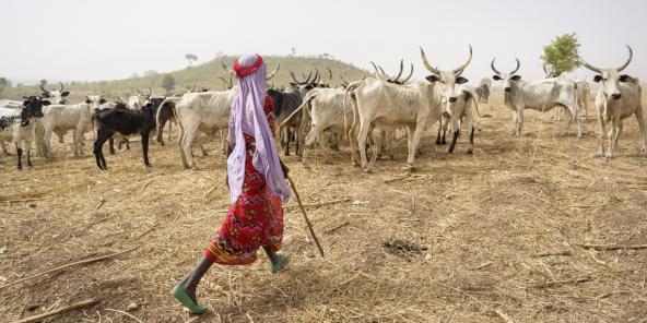 Une femme Mbororo, au Cameroun, en 2015.