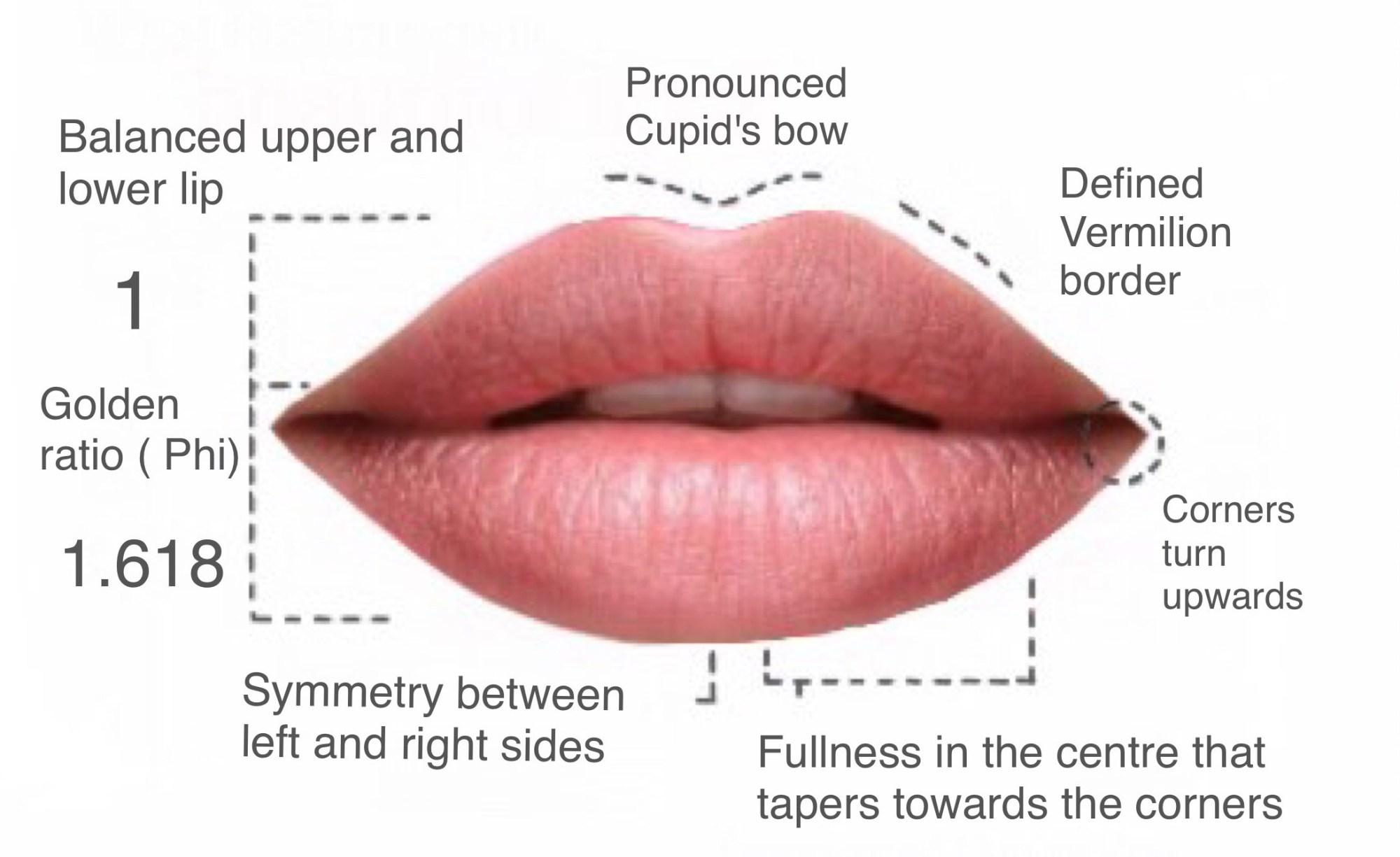 hight resolution of lip fillers hamilton luscious lips botox clinic hamilton lip to lip lip filler diagram