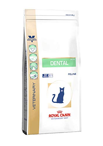 ROYAL CANIN Dental DSO 29 Nourriture pour Chat 3 kg