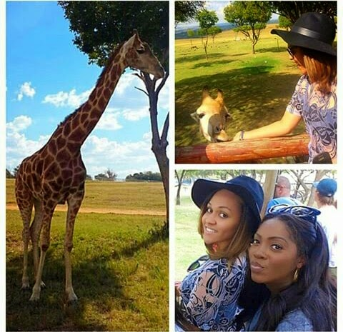 Tiwa-savage-safari-jewanda-2