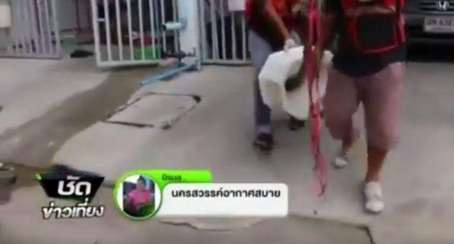 python-mord-thailandais-sur-ses-toilettes-jewanda7