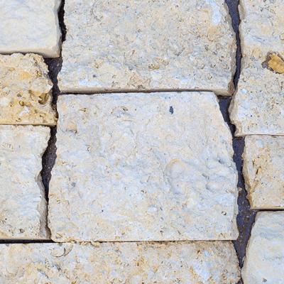 Cordova Shell Stone Thin Veneer Image