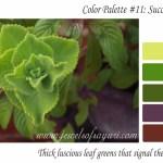 March Color palette – succulent spring