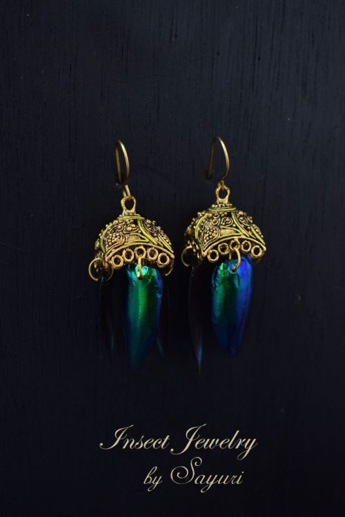 Beetle wings earrings