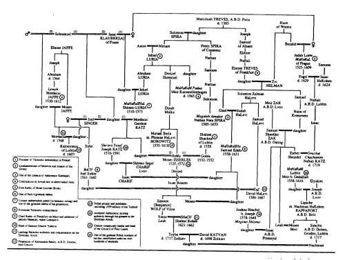 small resolution of  family tree