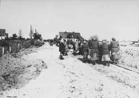 Ravensbrueck Prisoners Working in the Snow