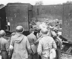 Holocaust Horrors
