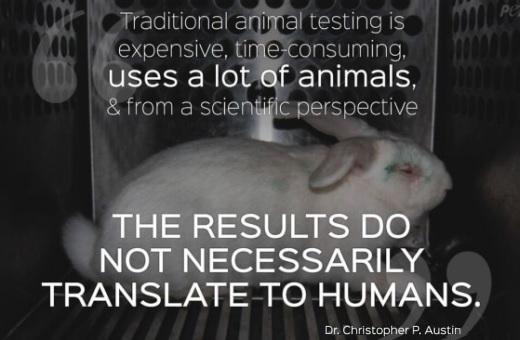 JEZT - Statement zu Tierversuchen von Dr. Christopher P. Austin - Abbildung © Peta