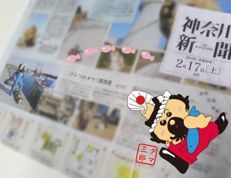 20180217神奈川新聞猫の日特集