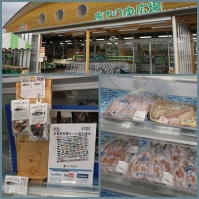 2013.1.8あさつゆ広場