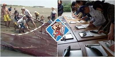 平塚市漁協 体験する画像