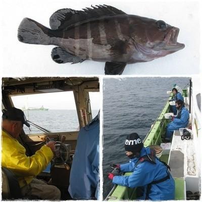 20130328釣獲調査