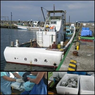 20130805日海丸出荷