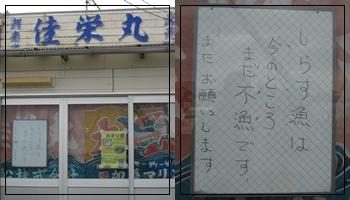 2012年3月シラス直売 佳栄丸