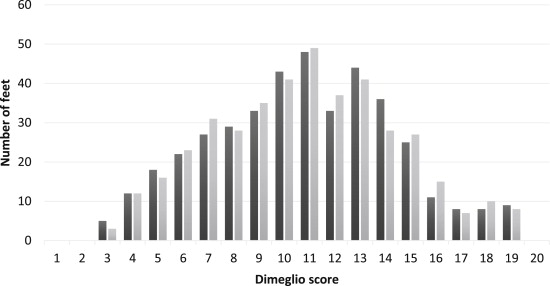 A Clinical Evaluation of the Pirani and Dimeglio