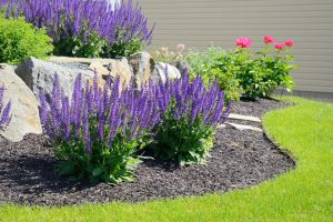 Your Spring Landscaping Checklist