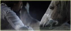 Gazelle - Le film autobiographique de Jean-Ffrançois
