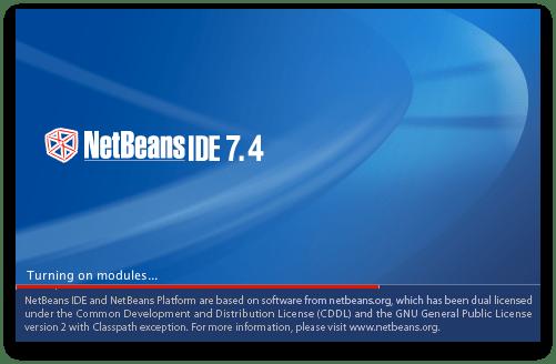 Running NetBeans anyhow