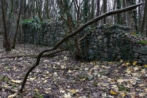 Klostermauer, Naturpark DIE WÜSTE Mannersdorf