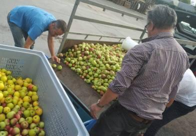 Des pommes au jus