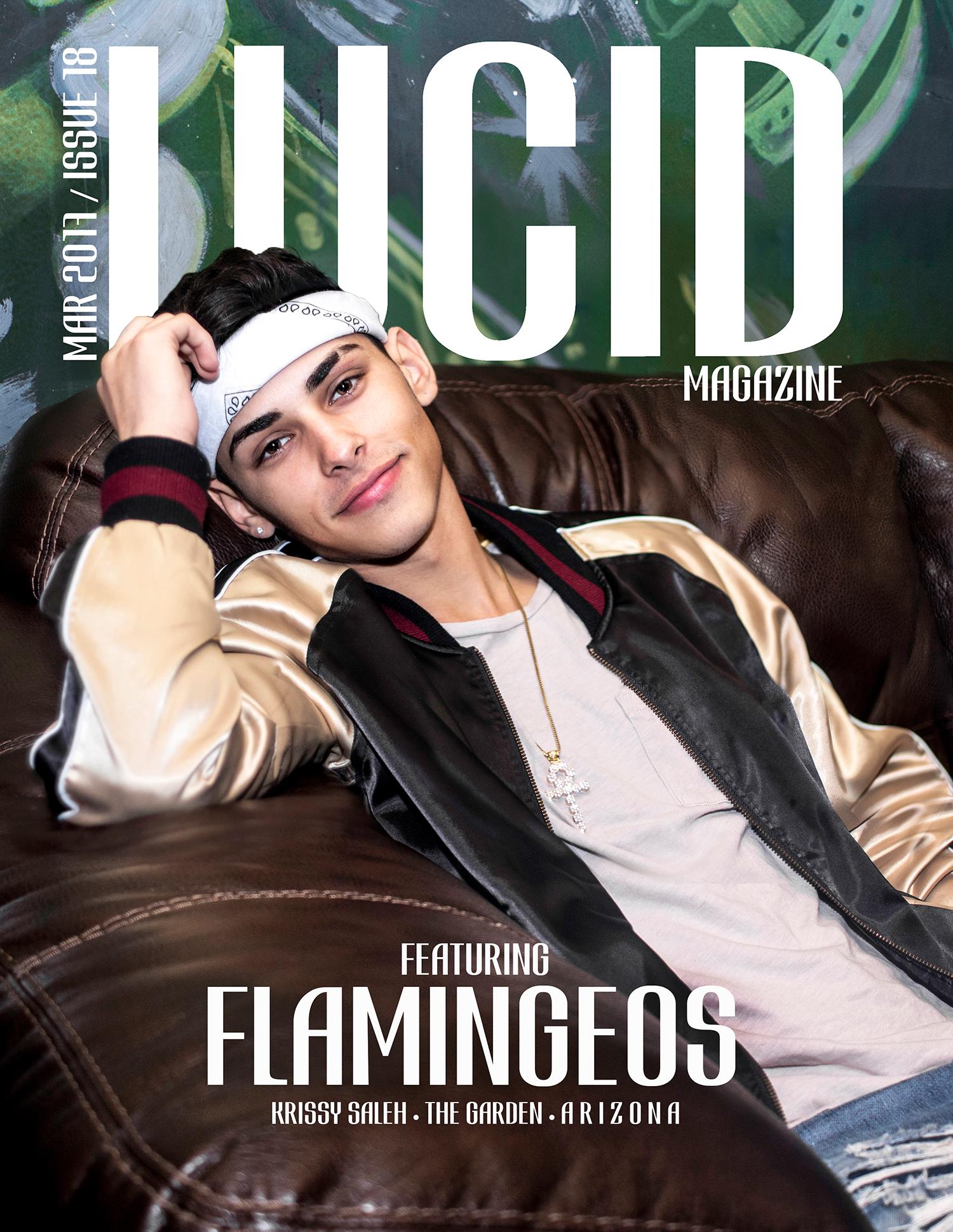Lucid-Magazine-Jhanna-Shaghaghi-Flamingeos