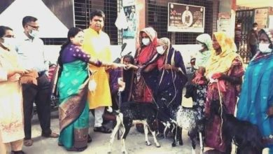 Photo of ঝিনাইদহ হরিণাকুন্ডতে ভিক্ষুক পুনর্বাসনে ছাগল বিতরণ
