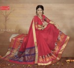 Ashapura sarees brings sparkle silk designer weaving pattern sarees concept