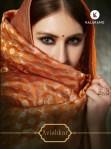 Kalarang creation avishkar traditional designer Salwar Kameez Collection
