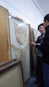 Checking the condition of the artifacts
