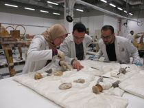 Conservators checking the condition of chariot's accessories